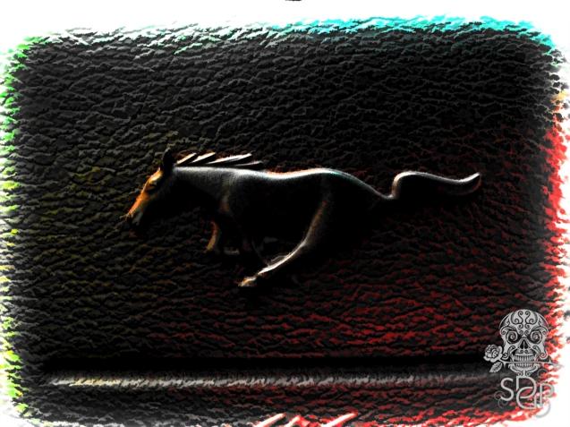 Wild Horse Power