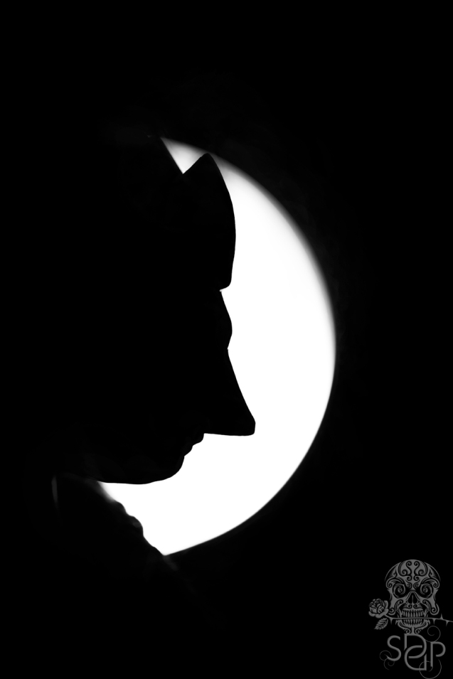 Shadow Puppet - close up