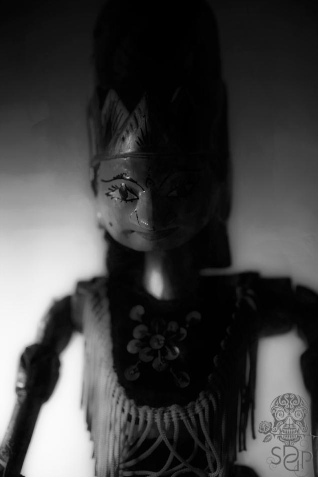 Shadow Puppet - selfie